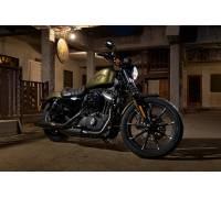 Harley Davidson  Iron Verbrach